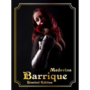 Medovina Barrique Limited Edition 0,375 l